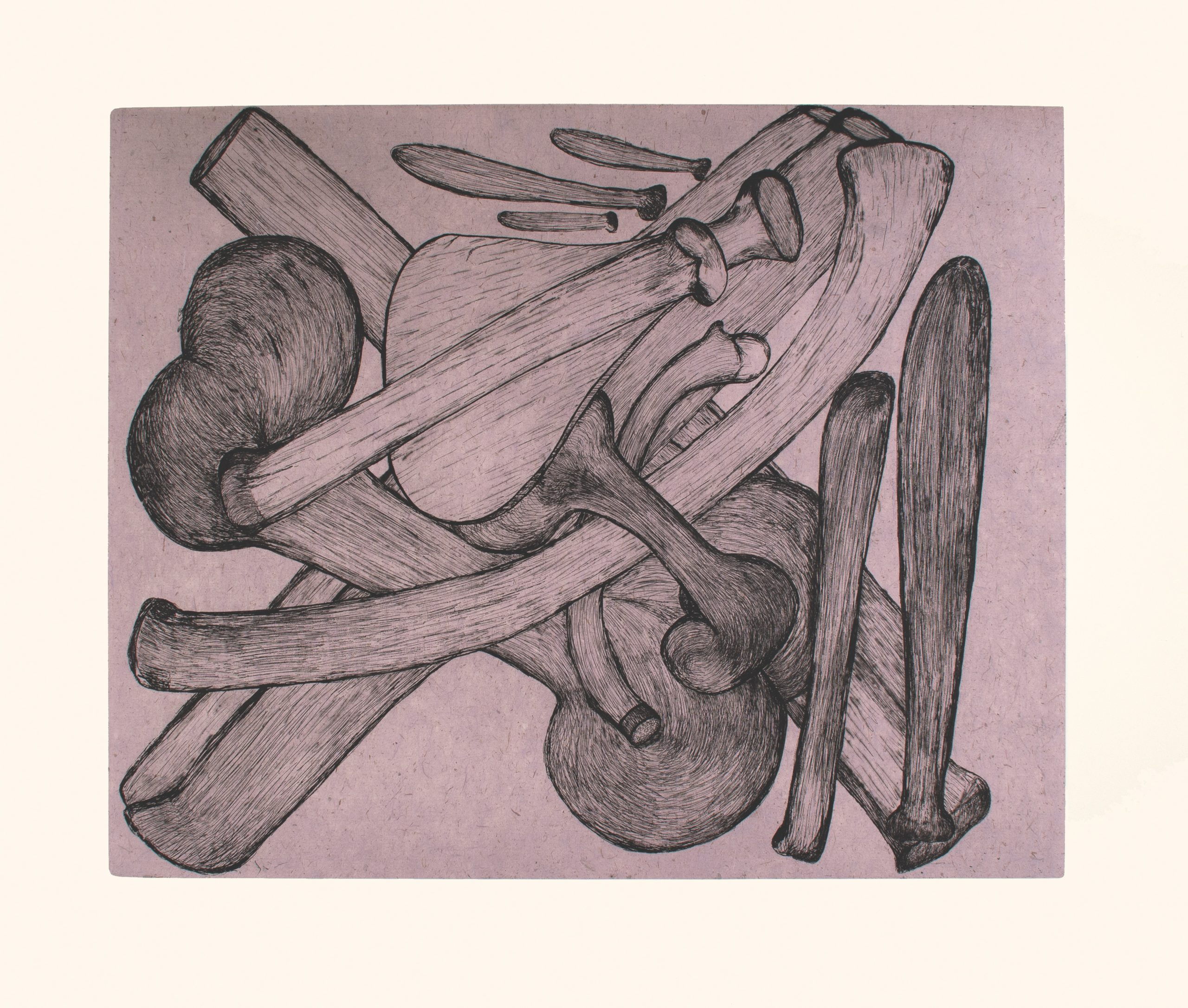 Purple Bones by Shuvinai Ashoona
